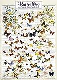 International Publishing 0804N00025B - Butterflies, Klassische Puzzle