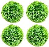 WANGSHAOFENG 2 * 2 cm de 4 Piezas Verde Algas Marinas Bola de Hierba decoración Acuario ecológico Artificial Algas de Gala de Agua Planta Acuario (Color : Green, Size : 4 * 4cm)