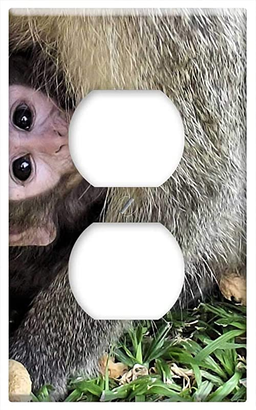 Switch Plate Outlet Cover Monkey Baby Vervet Wild Animal Cute Nature