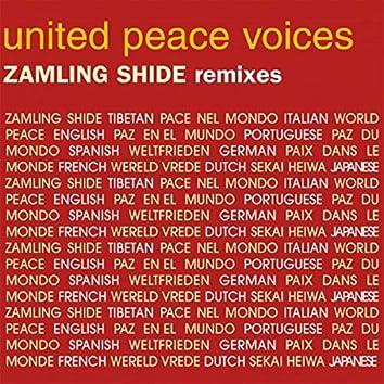 Zamling Shide (The Remixes)