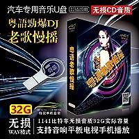 汽车载U盘32G粤语经典老歌DJ慢摇酒吧嗨曲HIFI高音质MP3优盘 WAV格式