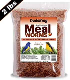 TradeKing 2 lb Dried Mealworms – High Protein Treat for Wild Birds, Chicken, Fish..