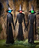 Baga Goodies Set of 3 Life Size Lighted Witches Color Changing Lights Halloween Prop Decoration
