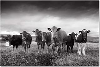 Nachi Wall - Cow Canvas Wall Art Black and White Farm Animal Pictures Wall Decor for Living Room Kitchen Modern Giclee Print Artwork Gallery Canvas Wrapped Ready to Hang