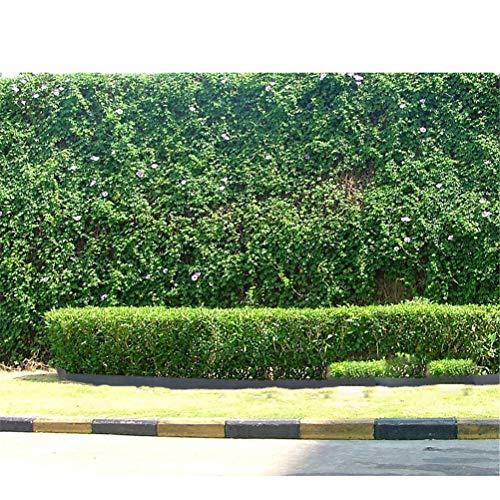 Dbtxwd 10M Plastikrasen-Kanten flexibel, Gras-Weg-Rand-Grenze für Rasen, Grenzen, Garten, Blumenbeete und Steine schützen, grün
