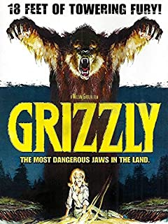 Best grizzly maze bear Reviews