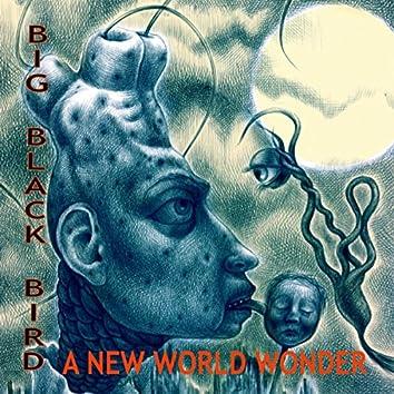 A New World Wonder
