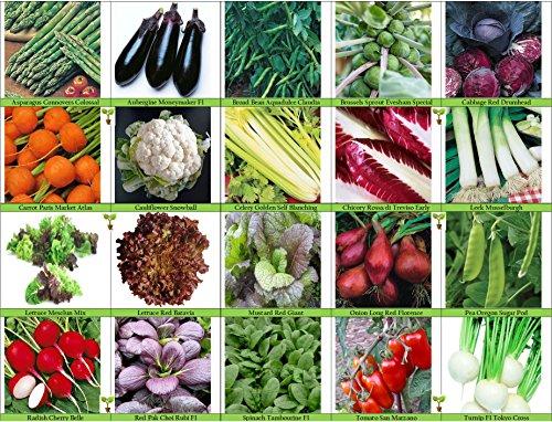 Viridis Hortus - 20 Packs of Vegetable Seeds - Tomato, Celery, Leek, Pea, Mustard Red Zest, Carrot, Chicory, Turnip etc (20 Packets Included)