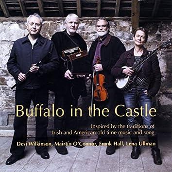 Buffalo in the Castle