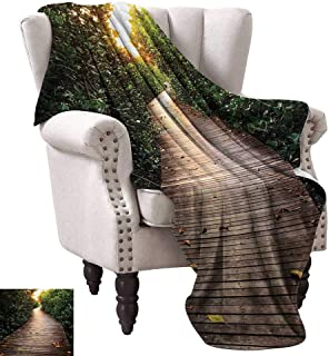 WinfreyDecor Jungle Warm Blanket Boardwalk in Mangrove Forest Sunlight Tunnel Sunset Autumn Golden Leaves Cozy for Couch Sofa Bed Beach Travel 70