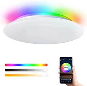 Smart Led Ceiling Light Flush Mount Ceiling Lighting Fixture WiFi Alexa Google Home Control Adjustable Brightness RGB Light Fixture for Living Room Bedroom Kitchen