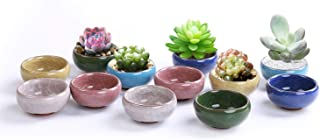 LUCKEGO 2.5 Inch Ceramic Ice Crack Zisha Serial Succulent Plant Pot Cactus Plant Pot Flower Pot Container Planter Full Colors Package 1 Pack of 12