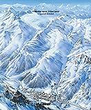 Les plans des pistes 2e ED - Les domaines skiables de France dessinés par Pierre Novat
