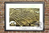 Ted's Vintage Art Tecumseh Michigan 1868 Vintage Map Print   Historic Lenawee County, MI Art   Digitally Restored On Museum Quality Matte Paper 18' x 24'