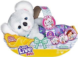 Little Live Pets Cozy Dozy KIP The Koala Bear - Más de 25 S
