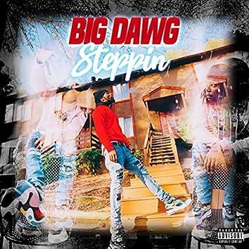 BIG DAWG Steppin'