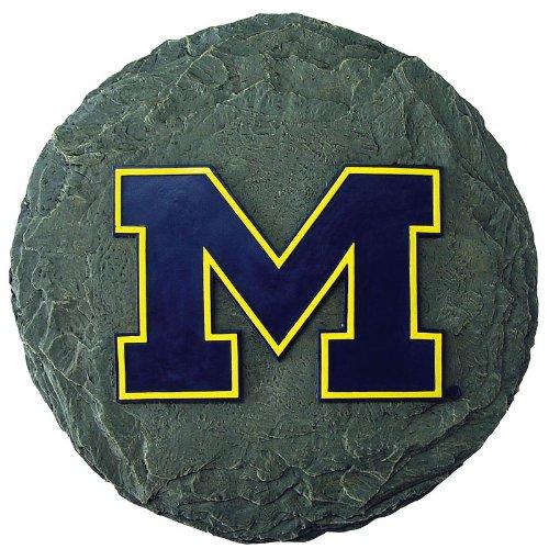 NCAA Michigan Wolverines Stepping Stone