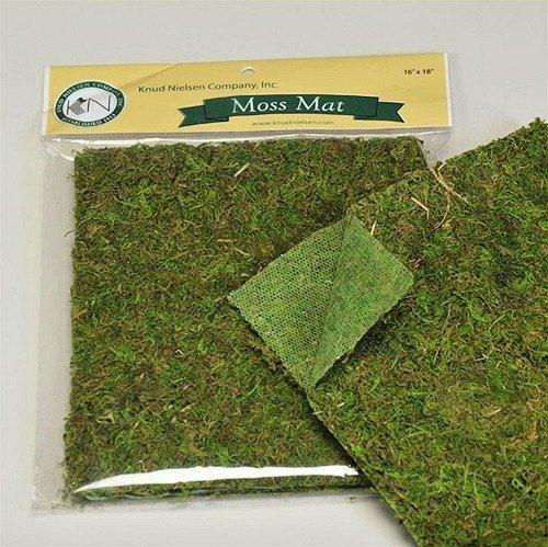 """DriedDecor.com Preserved Moss Mat Table Runner in Green - 18"""" Long"""