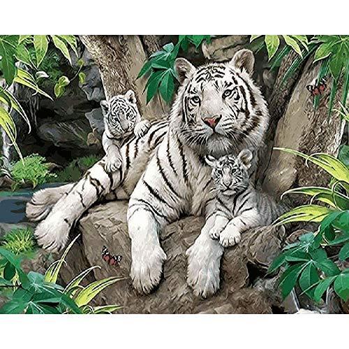 JRGGPO Tigre en la Roca DIY 5D Diamond Painting, Niños Adulto Regalo Mosaico de Diamantes para decoración de la Pared del hogar(40x50cm Diamante Cuadrado)