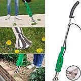 Green Turbo - Quemador de malas hierbas (sin gas, funciona eléctrico, 2000 W, temperatura a elegir 60 °C o 650 °)