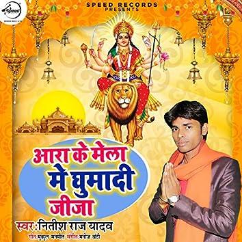 Aara Ke Mela Me Ghumadi Jija - Single