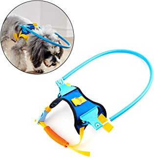 blind dog device