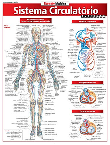 Sistema Circulatório. Avançado