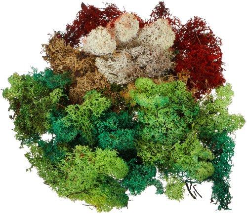 FALLER 170730 - Islandmoos, farblich sortiert