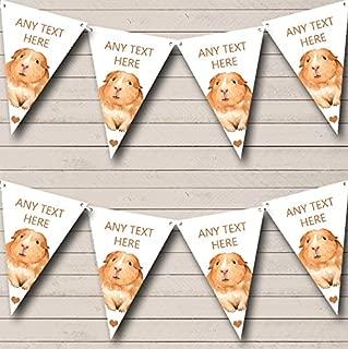 Best guinea pig party decorations Reviews