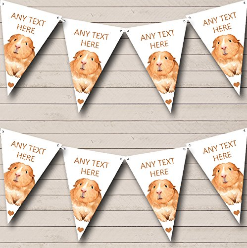 Cute Watercolour Guinea Pig Personalised Children's Bunting Party Banner Decoration Garland