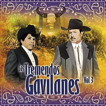 Los Tremendos Gavilanes Vol. 3