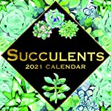 Calendario de pared 2021 - Calendario suculentas, 30 x 30 centímetros Mensual Vista, de 16 meses, flores y plantas Theme con Echeveria, cactus, aloe vera, incluye 180 etiquetas en Inglés