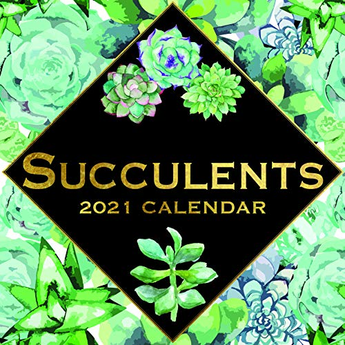 Calendario de pared 2021 - Calendario suculentas, 30 x 30 centímetros Mensual...