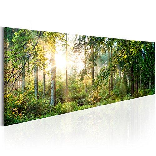 murando - Bilder 120x40 cm Vlies Leinwandbild 1 TLG Kunstdruck modern Wandbilder XXL Wanddekoration Design Wand Bild - Landschaft Natur Wald Bäume c-C-0032-b-b