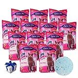 Lyra Pet® 12 x 5 L = 60 L Cats Power Silikat Katzenstreu Naturprodukt + Geschenk