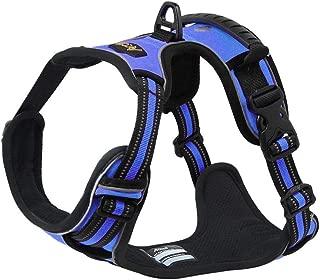 harness for cavalier king charles spaniel