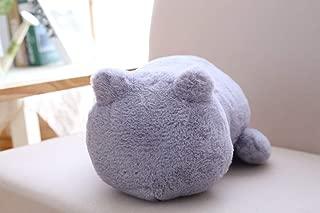 minimalist cat cushion