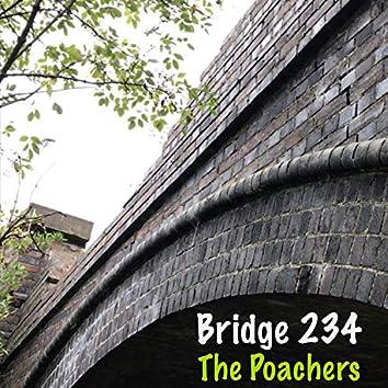 Bridge 234