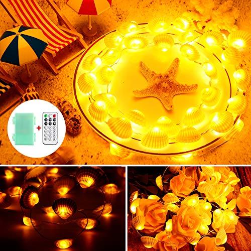 Fee Lichterkette 10 Füße 40 LEDs, Batteriebetrieben mit 12 Modi, Fernbedienung und Timer Dekor für Hochzeit Geburtstag Party Haus Schlafzimmer Wand Garten Dekoration