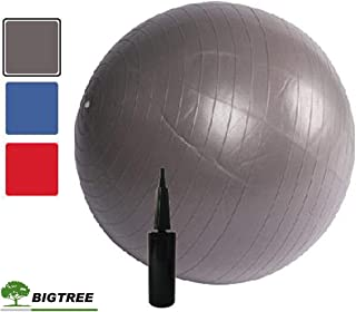 Bigtree Exercise Ball (55-75cm) Extra Thick Yoga Ball Chair, Anti-Burst Heavy Duty Stability Ball, Birthing Ball with Quick Pump (Office & Home & Gym)