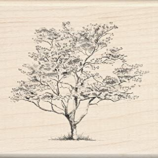 tree rubber stamps card making