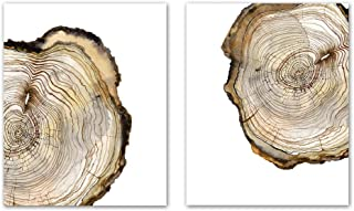 Watercolor Large Tree Ring Art Prints,Tree Stump Art Picture,Set of 2 8x10inch no Frame,Vintage Wood Slice Canvas Painting Poster,for Living Room Bedroom Home Wall Decor