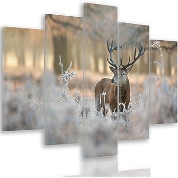 D/écoration Murale 6 Parties Impression sur Toile Feeby Tableau Multi Panneaux 120x80 cm Loups Marron Nature Image imprim/ée