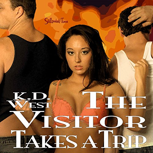The Visitor Takes a Trip audiobook cover art