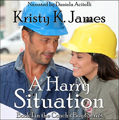 A Harry Situation audiobook cover art