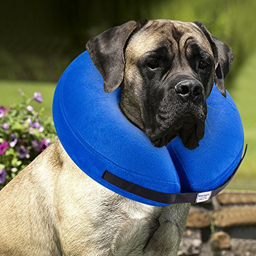 BENCMATE Protective Inflatable Collar for Dogs and Cats - Soft Pet Recovery Collar Does Not Block Vision E-Collar(X-Large)