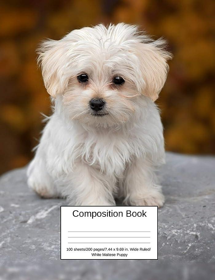 発音理想的ブリードComposition Book 100 sheets/200 pages/7.44 x 9.69 in. Wide Ruled/ White Maltese Puppy: Writing Notebook | Lined Page Book Soft Cover | Plain Journal |  Small Dog