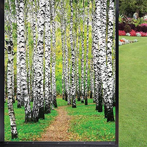 Natura folia okienna dekoracja kuchni, dekoracyjna statyczna folia okienna, biało-zielona czarna 60 x 90 cm