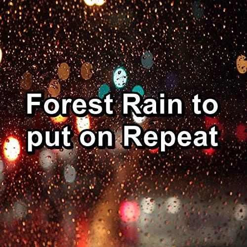 Thunderstorm Sleep, Relaxing Rain Sounds & Rain Sound Studio