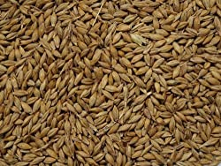 Product Speciality : suitableforvegetarians Whole Grain - Barley To add flavour - can be used for brewing beer, but mainly used in winemaking. Net Weight:500g
